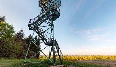 Tytuvėnų apžvalgos bokštas 3D Model