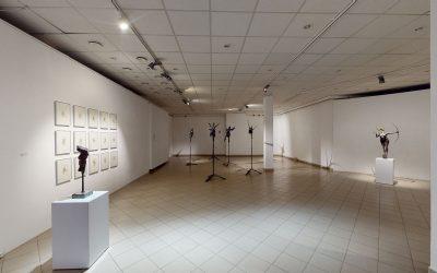 """Edmundas Frėjus """"Sugrįžtantys paukščiai"""" // Meno projektas """"Šiuolaikinės grafikos erdvės"""" virtualus 3D turas"""